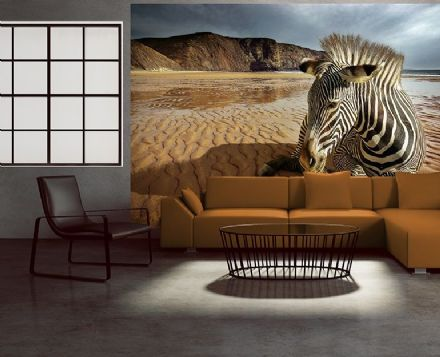 Zebra on the beach wall mural